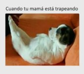 Cuando tu madre está trapeando