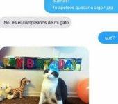 Cuando es el cumpleaños del gato