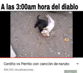 Solo un video más y a dormir