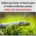 Fumar es bueno para el medio ambiente