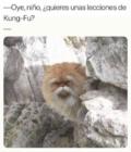 Lecciones de Kun-fu