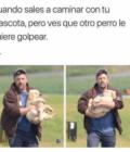 Cuando sales a caminar con tu perro